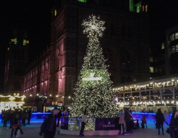 Natural History Museum ice rink © Memoirs Of A Metro Girl 2016