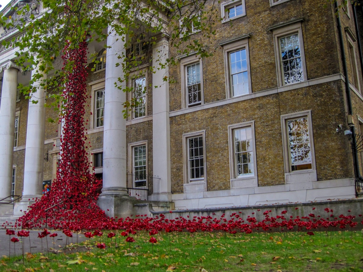 The Poppies return to London as the Weeping Window comes to the Imperial War Museum