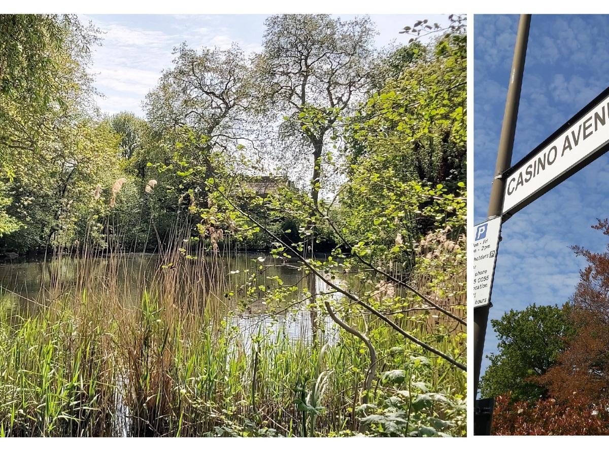Casino Avenue Sunray Gardens Dulwich
