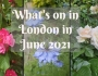 Guide to what's on in London in June2021